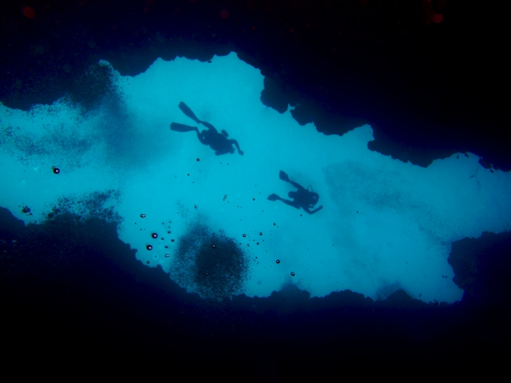 Looking into the blue di Charmer