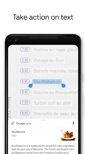 Google Lens Android App Screenshot