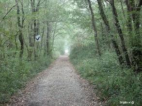 Photo: Quelques kms le long d'une ancienne voie ferrée