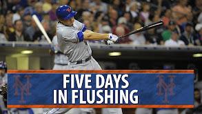 Five Days in Flushing thumbnail