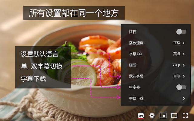 YouTube™ 双字幕