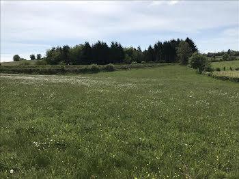 terrain à Montgibaud (19)