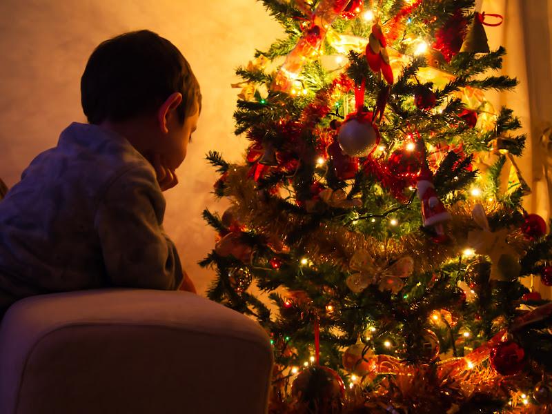 La magia del Natale di max83cb