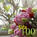 100 Şifa icon