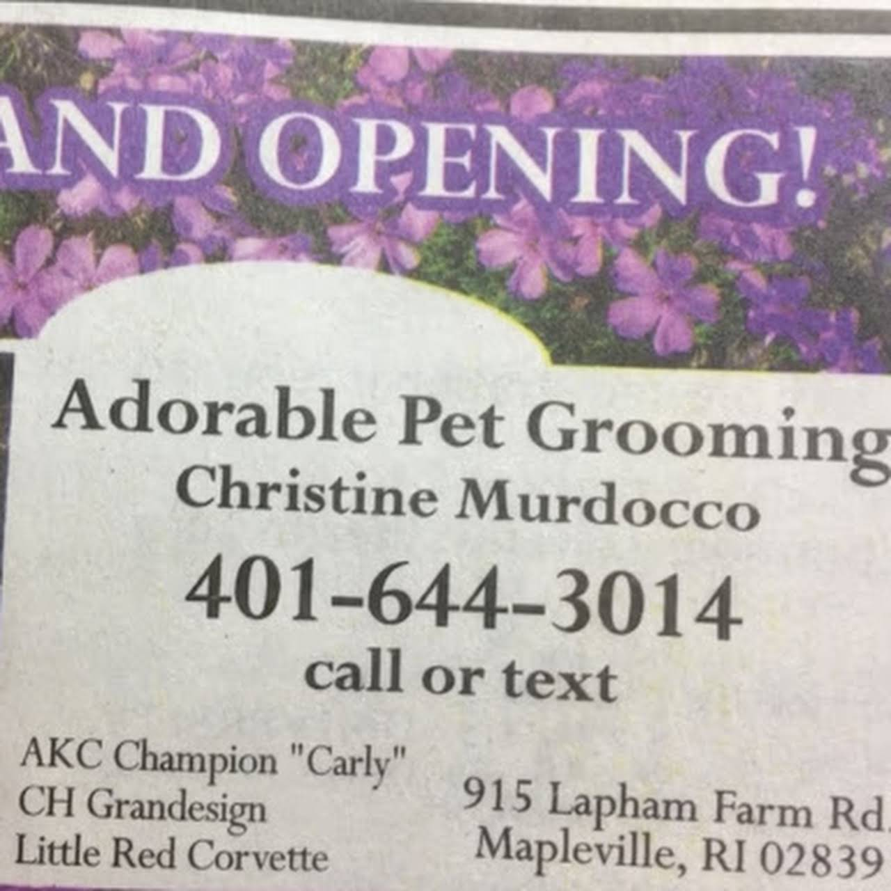 Adorable Pet Grooming - Pet Groomer
