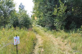 Photo: Goldenville Walking trail. Marker #7.