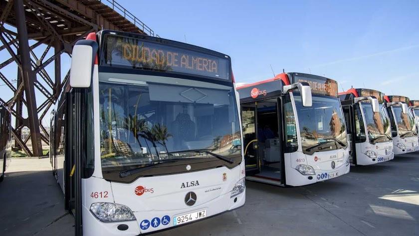 Autobuses en el Parque de Las Almadrabillas