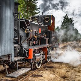 Krøder banen by Dirk Rosin - Transportation Railway Tracks