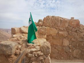 Photo: La verda stelo flirtas super Masado
