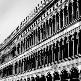 Never Ending Lines of The Doge  by Joey - Buildings & Architecture Architectural Detail ( pwcdetails architecture details arches palazzo san marco venice italy never ending lines )