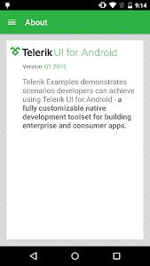 Telerik Examples screenshot 5