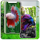 Wallpaper Beautiful Betta Fish (Ikan Cupang) Apk