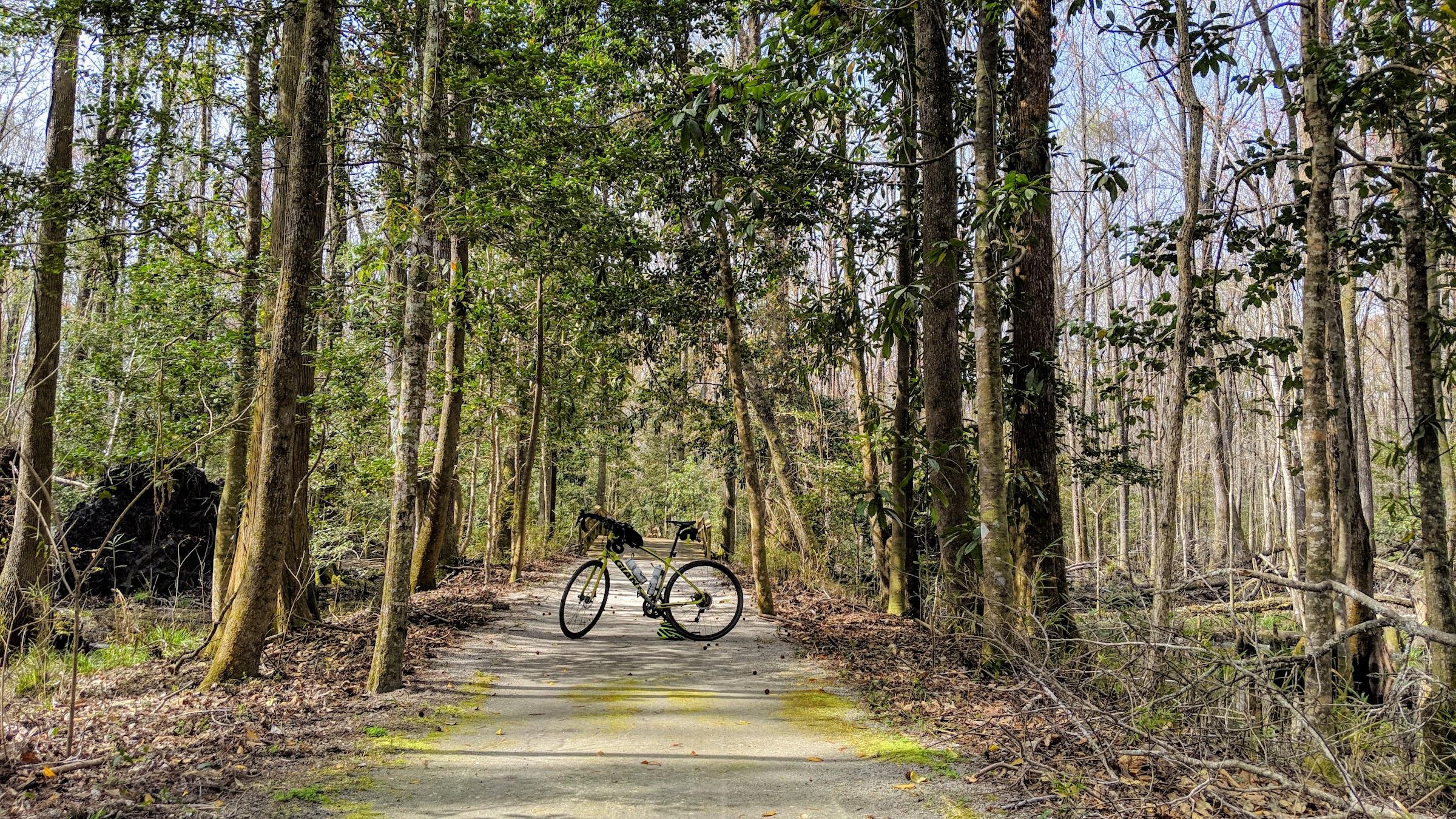 Bike on trail in Walterboro Wildlife Sanctuary