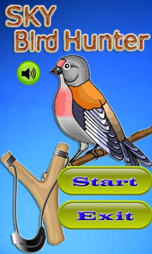 Sky Bird Hunter