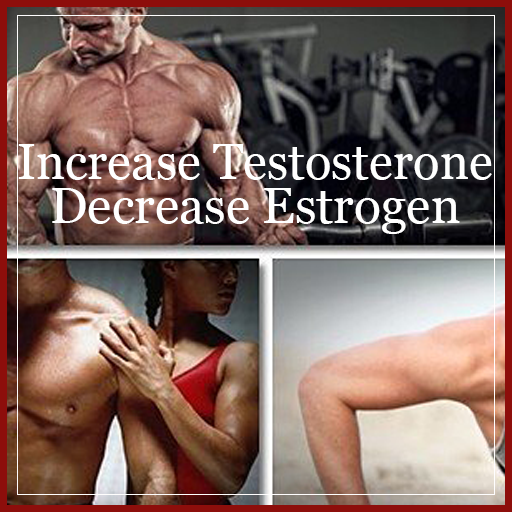 Increase Testosterone And Decrease Estrogen - Apps on Google Play