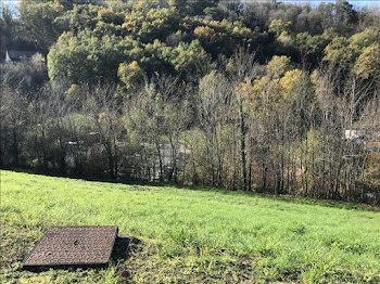terrain à Beaulieu-sur-Dordogne (19)