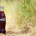 Coca Cola (Sielena theme)