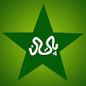 Pakistan Cricket News Lite icon