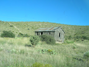 "Photo: Our first stop was on this ""Shall-Remain-Nameless"" ranch, in search of a long-lost champion yucca."