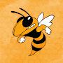 Henning Public School Hornets