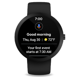 Wear OS by Google Smartwatch (was Android Wear) APK screenshot thumbnail 9