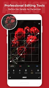 Fotor Photo Editor – Photo Collage Mod Apk (Pro Unlocked) 6.2.3.901 3