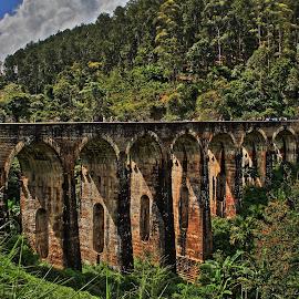 9 arch bridge by Jorrit Prmt - Buildings & Architecture Bridges & Suspended Structures ( ella, sri lanka, train )