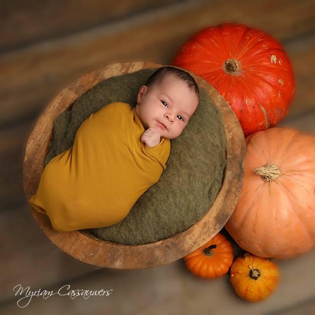Newborn - Baby