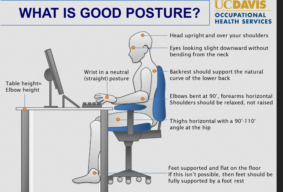 How to Set up an Ergonomic Workspace