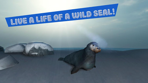 Seal Survival Simulator 3D