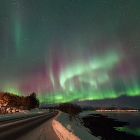 aurora in top shape by Benny Høynes - Landscapes Starscapes ( canon, bennyhøynes, northernlights, aurora, boreoalis, vesterålen, norway, colours )