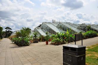 Photo: Princess of Wales Conservatory - Kew - Royal Botanical Gardens