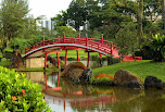 #49068436 - Curved red bridge over stream in Japanes