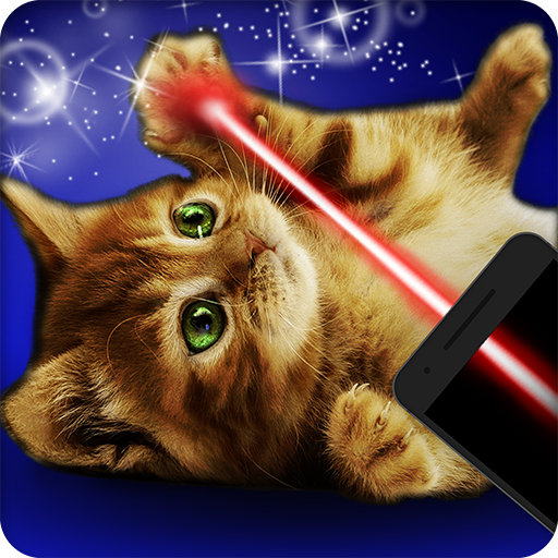 Laser for playing with cat
