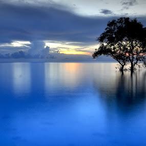 SENDIRI menemani kesunyian senja ini By : SUHU by ANdi Khoebill - Landscapes Waterscapes