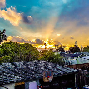 Light Rays by Rachel Santellano - City,  Street & Park  Neighborhoods ( san jose, california, weather, view, sun )