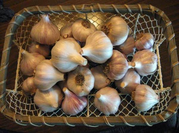 Garlic From My Garden Recipe