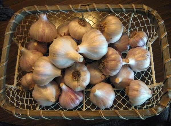 My Home Grown Garlic