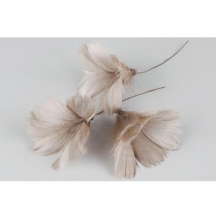 Fjädrar Blom Mullvad 12-pack