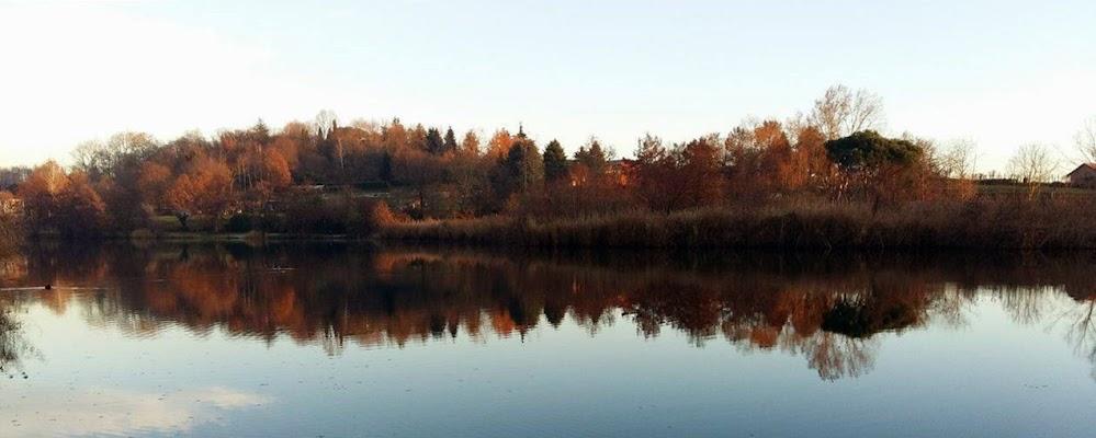 L'autunno riflesso di viola94