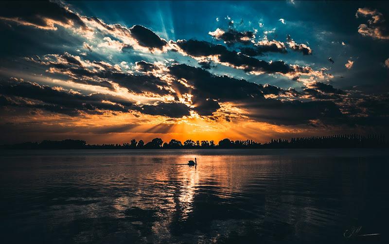 Il Lago dei Cigni di a. ©lass