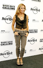 Photo: LONDON - JUNE 29:  Sheryl Crow poses in the press room at the Hard Rock Calling Festival On Day 1 on June 29, 2008 in London, England.  (Photo by Jo Hale/Getty Images) *** Local Caption *** Sheryl Crow