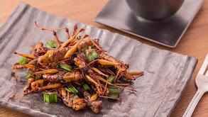 Best Food -- Coast to Coast Cuisine thumbnail