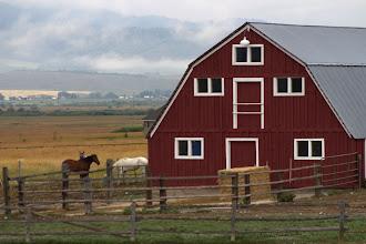 Photo: Barn, Star Valley, WY