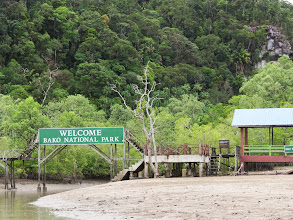 Photo: Bako National Park