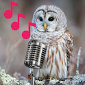 Barred Owl sounds and calls at night icon