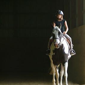 Determination by Elaine Tweedy - Animals Horses ( paint horse, girl, horse )