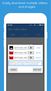 Save Twitter Videos and GIFS