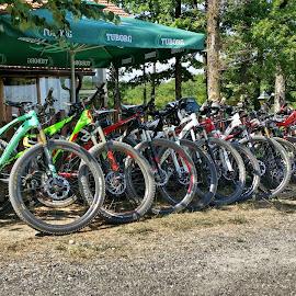 Take a rest...  by Boban Buliga - Sports & Fitness Cycling ( #bikeservice   #cycling #bike #bicycle #mtb   #bikeporn #bikelife   #cyclingphotos #instabike  #cyclinglife #ride #velo #specialized #shimano #stravacycling  #cyclingshots #biking  #gopro #garmin   #photooftheday )