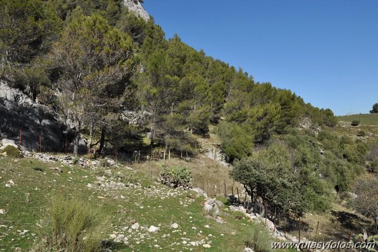 Calzada de Villaluenga a Grazalema